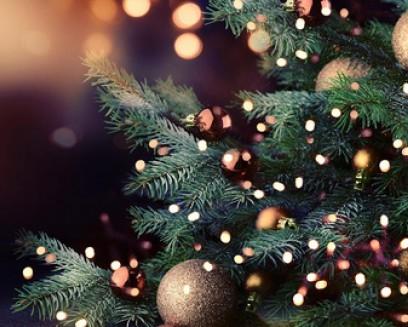 CHRISTMAS OFFER 2020 IN RIVAZZURRA DI RIMINI